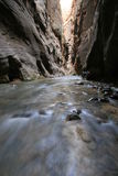 Canyon #3. A dark hallway in zion canyon with the virgin river royalty free stock image