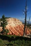 Canyon 6 di Bryce del ciclo di Bristlecone Immagini Stock