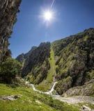 canyon Immagini Stock Libere da Diritti