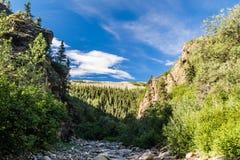 Canyon in the Alaska Range Royalty Free Stock Image
