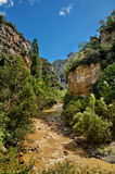 Canyon of Anso, Spain. A picture of the canyon of Anso in Spain Royalty Free Stock Photos