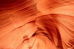 Canyon Arizona del crotalo Fotografia Stock