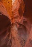 Canyon asciutto della forcella immagini stock libere da diritti