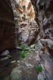 Canyon Avakas Royalty Free Stock Photo