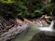 Canyon avec la cascade et le bois de flottage Photographie stock libre de droits