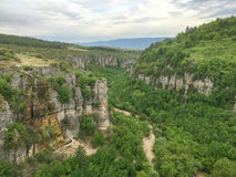 Canyon background. With cloudy sky and trees Stock Photography