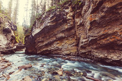 Canyon in Banff NP. Johnston Canyon in Banff NP, Canada. Beautiful natural landscapes in British Columbia. Summer season stock photo