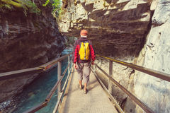 Canyon in Banff NP. Johnston Canyon in Banff NP, Canada. Beautiful natural landscapes in British Columbia. Summer season royalty free stock images