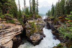 Canyon in Banff NP. Johnston Canyon in Banff NP, Canada. Beautiful natural landscapes in British Columbia. Summer season Stock Photos