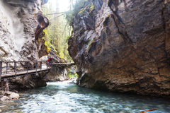 Canyon in Banff NP Stock Image