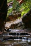 Canyon boscoso della scanalatura--Sottopassaggio fotografie stock libere da diritti