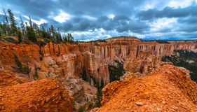 Canyon Bryce National Park di Ponderosa Fotografie Stock
