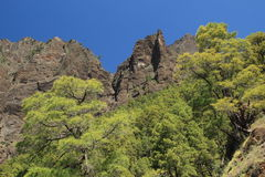Canyon of the Caldera de Taburiente, La Palma, Can Royalty Free Stock Photo