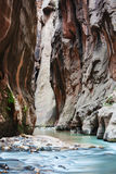 Canyon. Royalty Free Stock Images