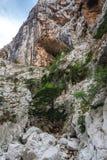 Canyon con la donna lontano Immagine Stock