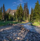 Morning Light Stream. Canyon Creek with Three-fingered Jack. Mt Jefferson Wilderness. Oregon Stock Photos