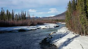Canyon creek in the Yukon. Drone flight along canyon creek in the Yukon on a beautiful sunny day in spring stock video