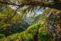 Canyon d'Eume Photo libre de droits