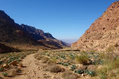 Canyon of Dana Biosphere Nature Reserve landscape near Dana historical village, Jordan, Middle East. Landscape of Dana Biosphere Nature Reserve located in Jordan stock image