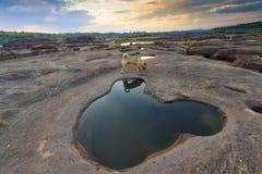 Canyon de 3000 Bok d'Ubonratchathani Images libres de droits