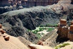 Canyon de Charyn, Kazakhstan, Almaty Photographie stock libre de droits