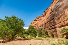 canyon De Chelly国家历史文物 图库摄影