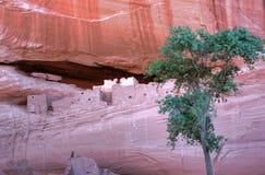 Canyon De Chelly Fotografía de archivo libre de regalías