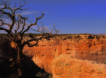 Canyon DE Chelly Stock Afbeelding