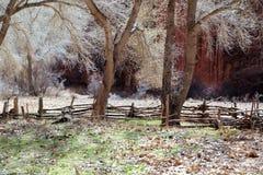 Canyon de Chelly Στοκ εικόνες με δικαίωμα ελεύθερης χρήσης