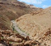 Canyon de désert Image libre de droits