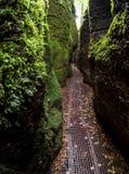 Canyon de dragon près de Wartburg en Allemagne III Photo stock