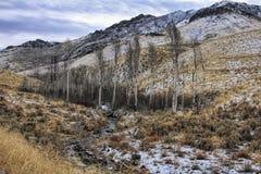 Canyon de l'eau Photographie stock