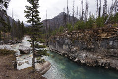 Canyon de marbre, parc national de Kootenay Photographie stock libre de droits