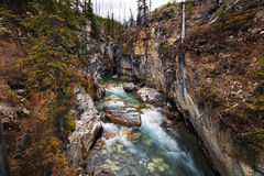 Canyon de marbre, parc national de Kootenay Image stock