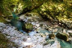 Canyon de Martvil, la Géorgie, Kutaisi Rivière, lacs, cascades Photos libres de droits