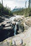 Canyon de Mistaya Image libre de droits