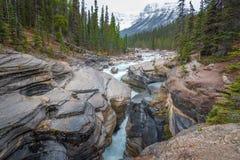 Canyon de Mistaya le long de route express de champs de glace en parc national de Banff, Canada image stock