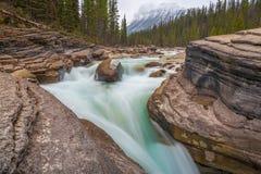 Canyon de Mistaya le long de route express de champs de glace en parc national de Banff, Canada photographie stock