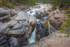 Canyon de Mistaya le long de route express de champs de glace en parc national de Banff, Canada images stock