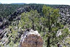 Canyon de noix photo stock