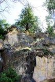 Canyon de noix photos libres de droits