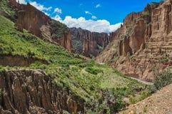 Canyon de Palca près de La Paz, Bolivie photo libre de droits