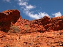 Canyon de rey Fotografía de archivo
