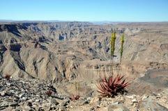 Canyon de rivière de poissons, Namibie Photographie stock libre de droits
