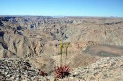Canyon de rivière de poissons, Namibie Photos libres de droits