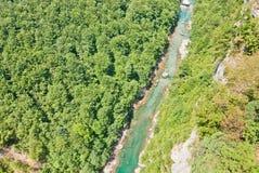 Canyon Tara Image stock