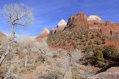 Canyon de roche et montagnes rouges, Zion National Park, Utah Photographie stock libre de droits