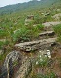 Canyon de Sarma image stock