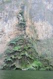 Canyon de Sumidero Image libre de droits