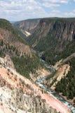Canyon de Yellowstone Image stock